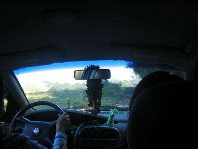 drive.jpg