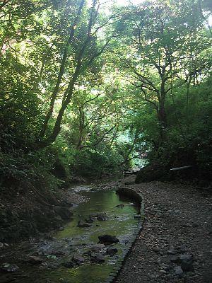 maedagawa01.jpg